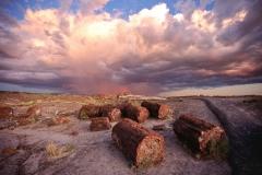 versteinerte Bäume, Petrified Forest, Arizona, USA, Wolken, Regenbogen
